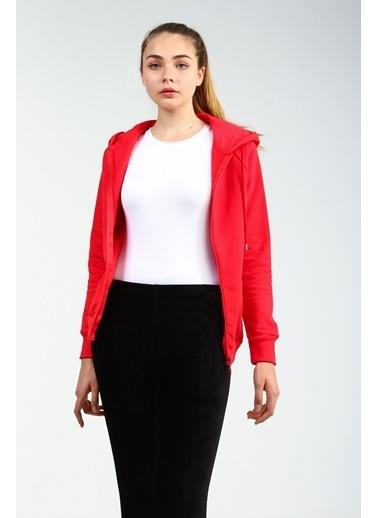 Collezione Sweatshirt Kırmızı